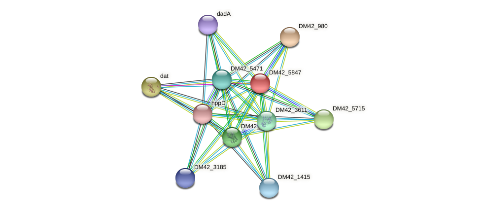 WL94_36160 protein (Burkholderia cepacia) - STRING interaction network