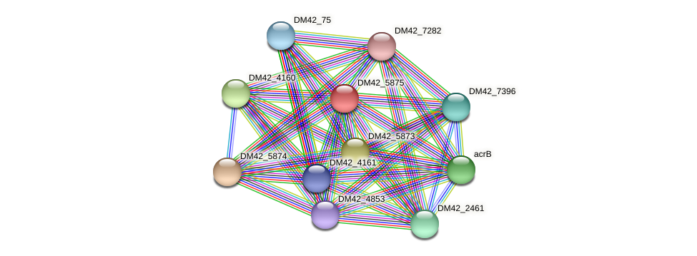 WL94_39210 protein (Burkholderia cepacia) - STRING interaction network
