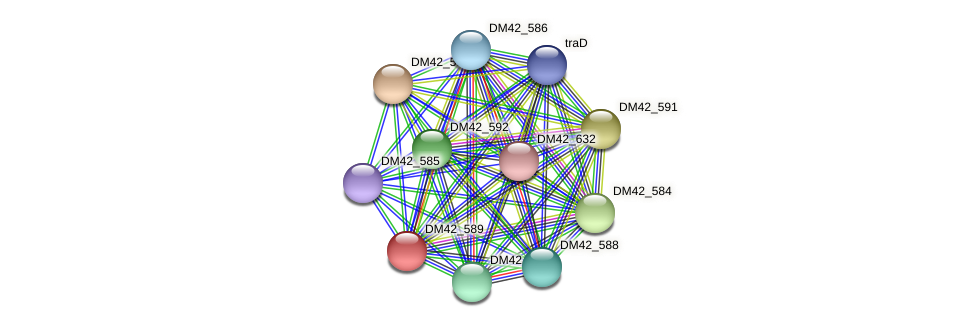 DM42_589 protein (Burkholderia cepacia) - STRING interaction network