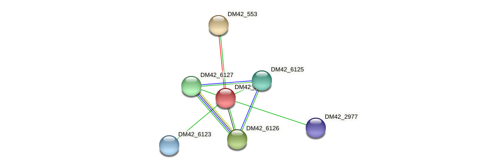 DM42_6124 protein (Burkholderia cepacia) - STRING interaction network