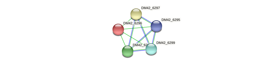 DM42_6296 protein (Burkholderia cepacia) - STRING interaction network