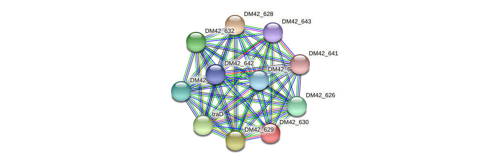 DM42_630 protein (Burkholderia cepacia) - STRING interaction network