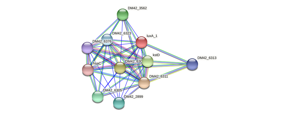 VL15_33315 protein (Burkholderia cepacia) - STRING interaction network