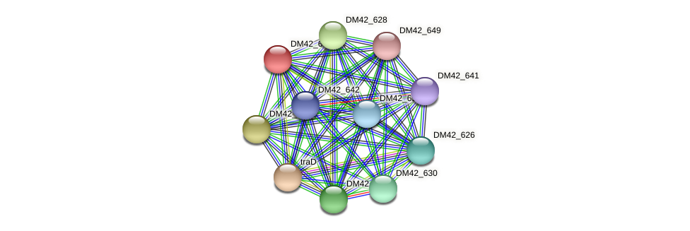 DM42_632 protein (Burkholderia cepacia) - STRING interaction network