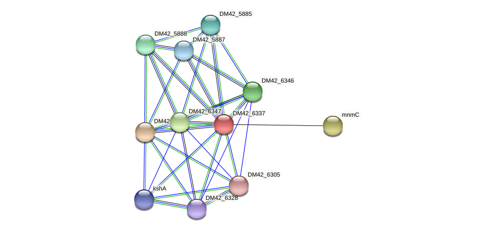 WL94_05835 protein (Burkholderia cepacia) - STRING interaction network