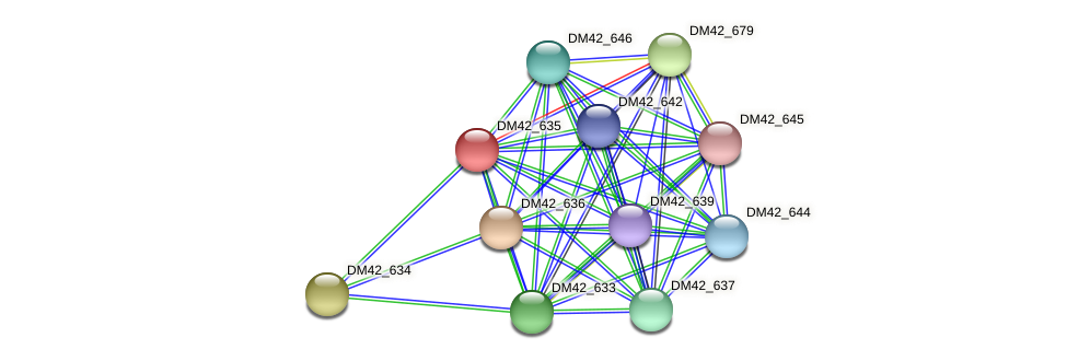DM42_635 protein (Burkholderia cepacia) - STRING interaction network
