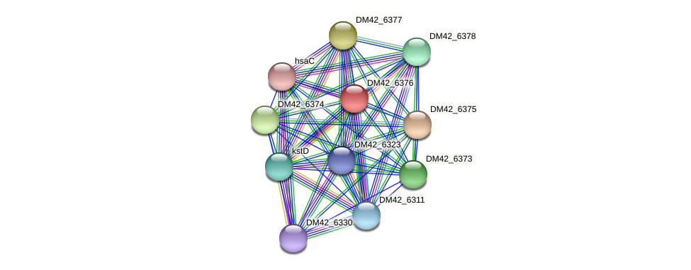 WL94_06110 protein (Burkholderia cepacia) - STRING interaction network