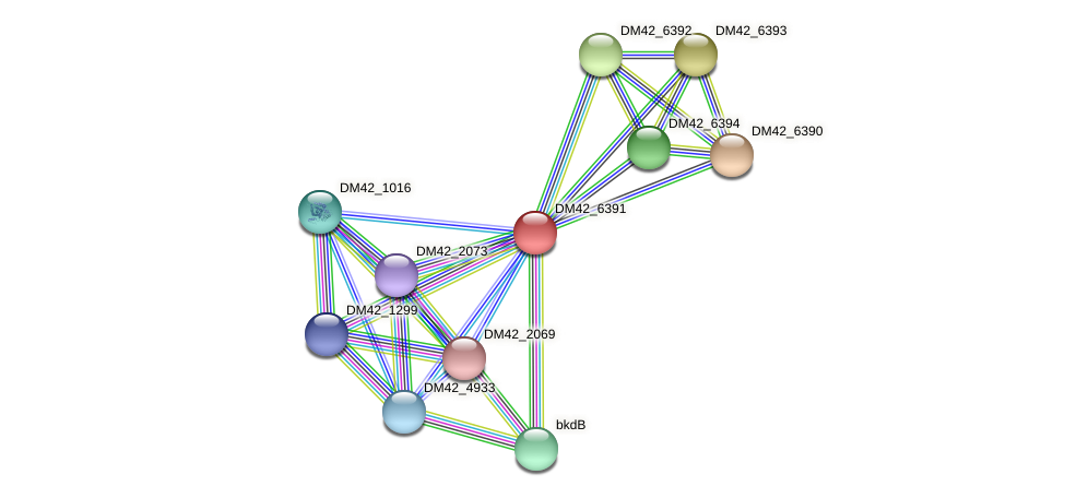 DM42_6391 protein (Burkholderia cepacia) - STRING interaction network