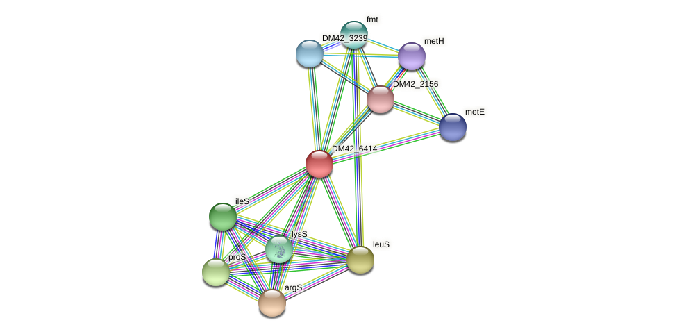 DM42_6414 protein (Burkholderia cepacia) - STRING interaction network