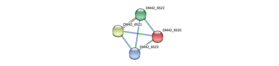 DM42_6520 protein (Burkholderia cepacia) - STRING interaction network