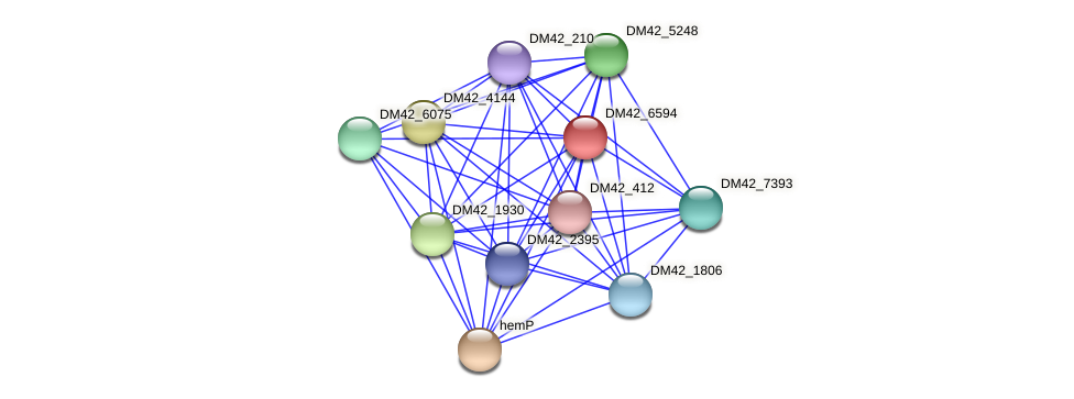 WL94_33705 protein (Burkholderia cepacia) - STRING interaction network
