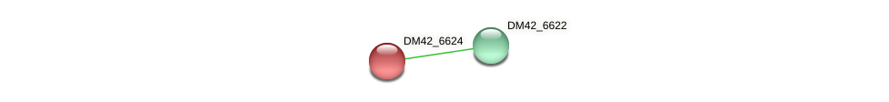 DM42_6624 protein (Burkholderia cepacia) - STRING interaction network