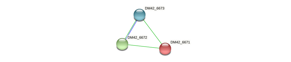 DM42_6671 protein (Burkholderia cepacia) - STRING interaction network