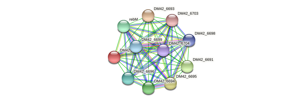 DM42_6692 protein (Burkholderia cepacia) - STRING interaction network