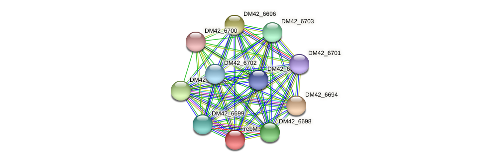 WL94_33105 protein (Burkholderia cepacia) - STRING interaction network