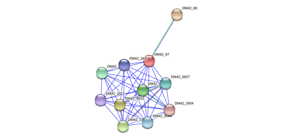 DM42_67 protein (Burkholderia cepacia) - STRING interaction network