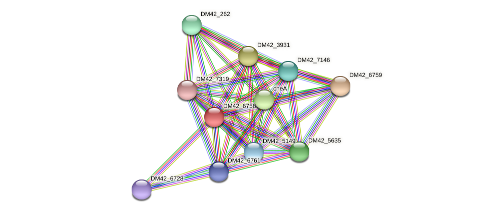 DM42_6758 protein (Burkholderia cepacia) - STRING interaction network