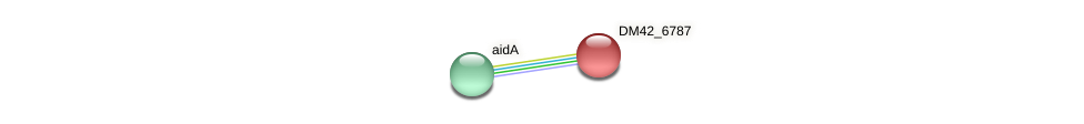DM42_6787 protein (Burkholderia cepacia) - STRING interaction network