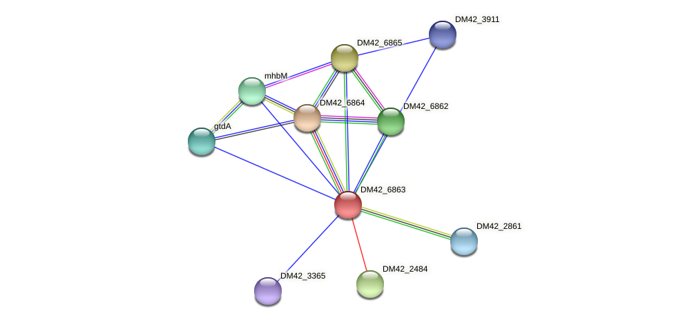 DM42_6863 protein (Burkholderia cepacia) - STRING interaction network
