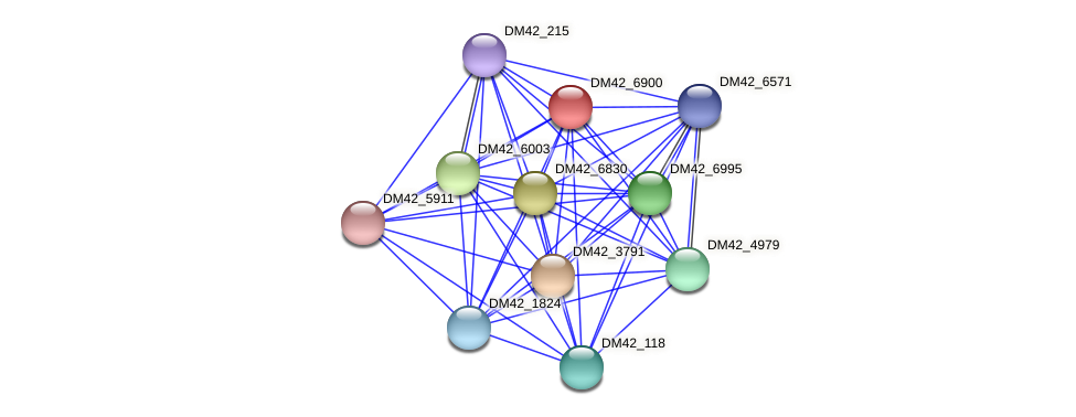DM42_6900 protein (Burkholderia cepacia) - STRING interaction network