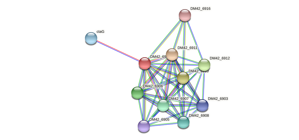 DM42_6909 protein (Burkholderia cepacia) - STRING interaction network