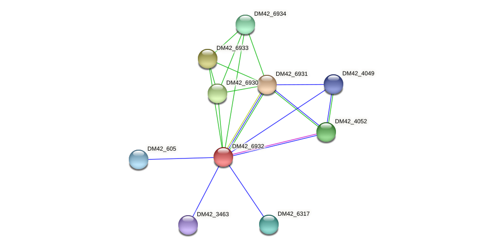 DM42_6932 protein (Burkholderia cepacia) - STRING interaction network