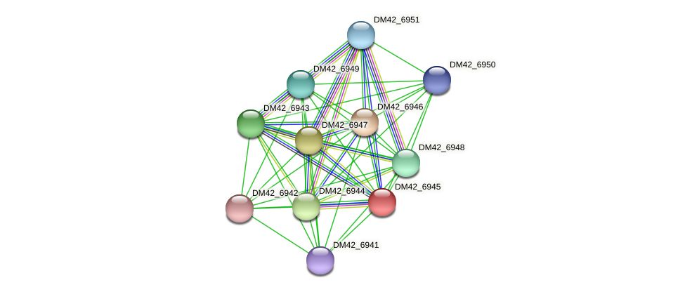 DM42_6945 protein (Burkholderia cepacia) - STRING interaction network