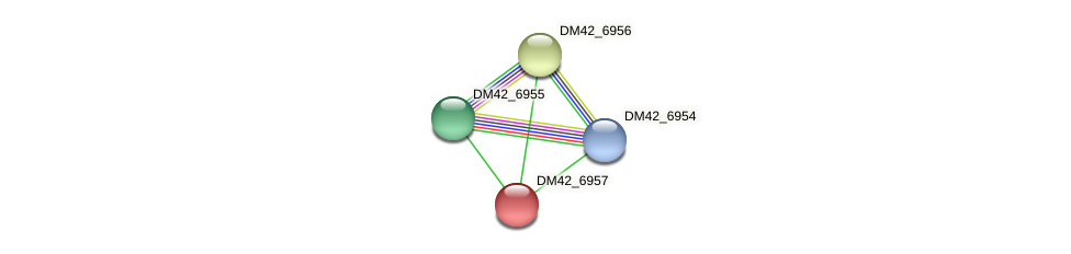 DM42_6957 protein (Burkholderia cepacia) - STRING interaction network
