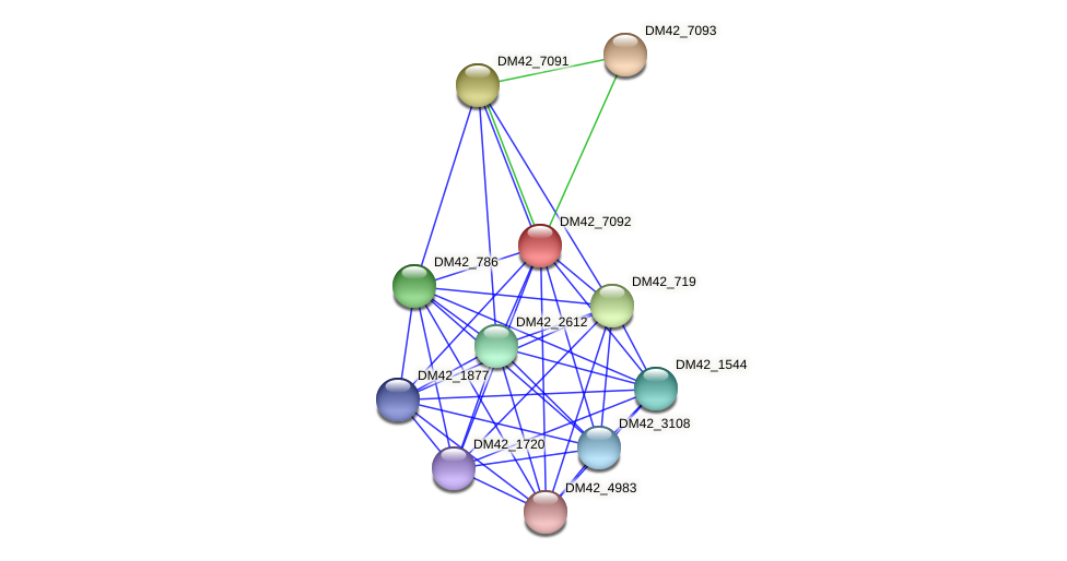 DM42_7092 protein (Burkholderia cepacia) - STRING interaction network