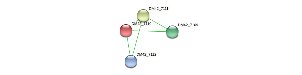 DM42_7110 protein (Burkholderia cepacia) - STRING interaction network