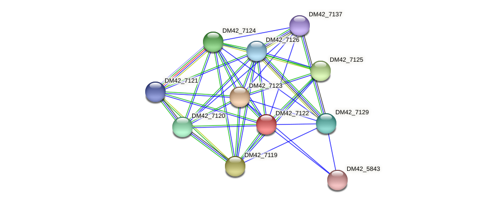 WL94_37140 protein (Burkholderia cepacia) - STRING interaction network