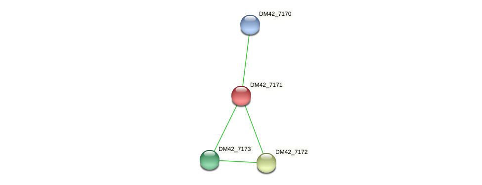 DM42_7171 protein (Burkholderia cepacia) - STRING interaction network