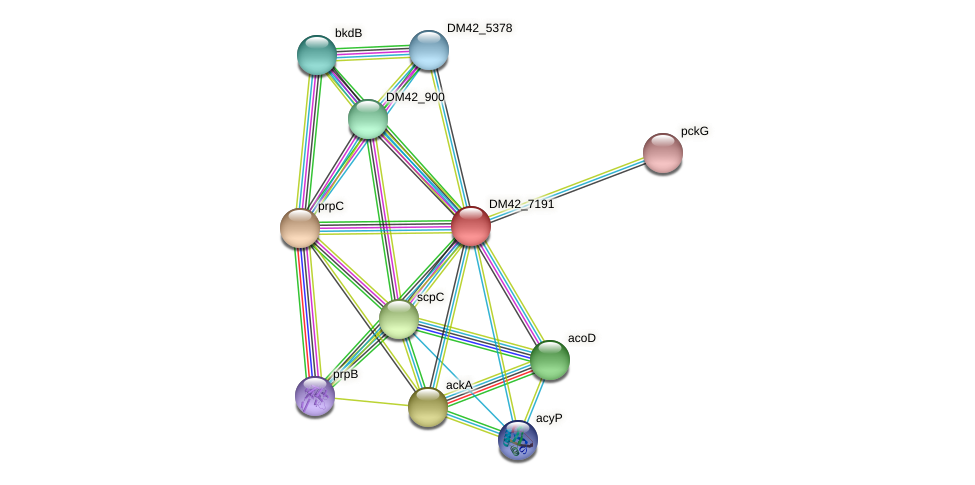 DM42_7191 protein (Burkholderia cepacia) - STRING interaction network