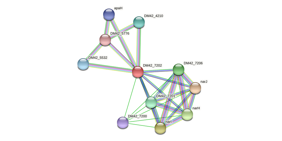 DM42_7202 protein (Burkholderia cepacia) - STRING interaction network