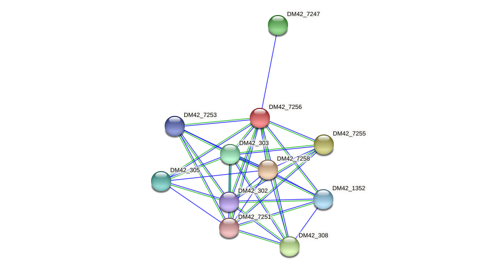DM42_7256 protein (Burkholderia cepacia) - STRING interaction network