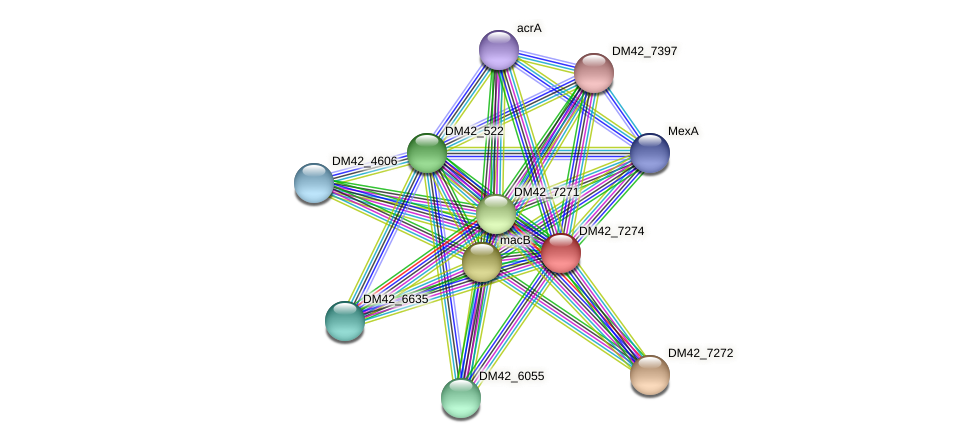 DM42_7274 protein (Burkholderia cepacia) - STRING interaction network