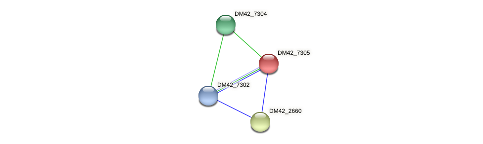 DM42_7305 protein (Burkholderia cepacia) - STRING interaction network