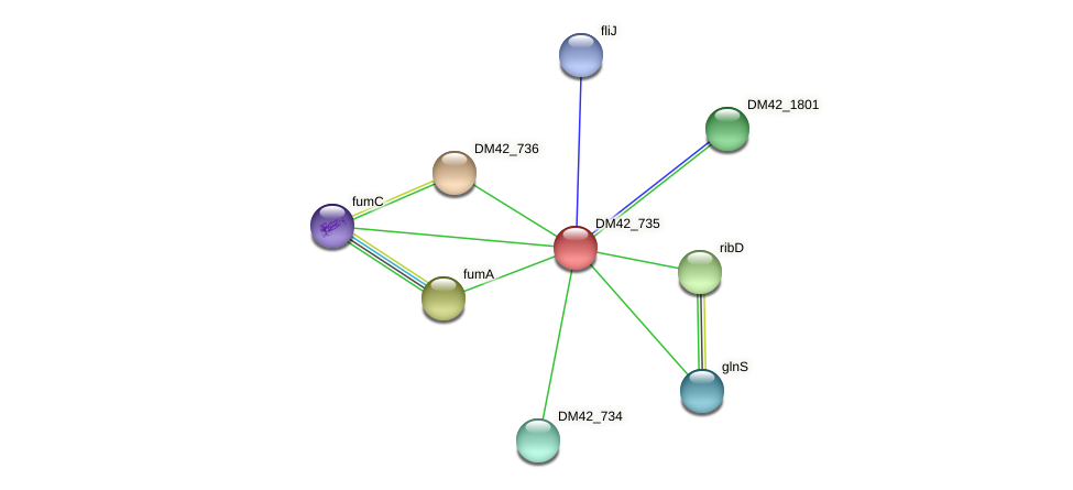 WL94_16855 protein (Burkholderia cepacia) - STRING interaction network