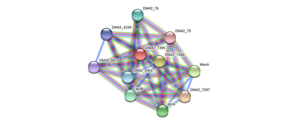 DM42_7395 protein (Burkholderia cepacia) - STRING interaction network