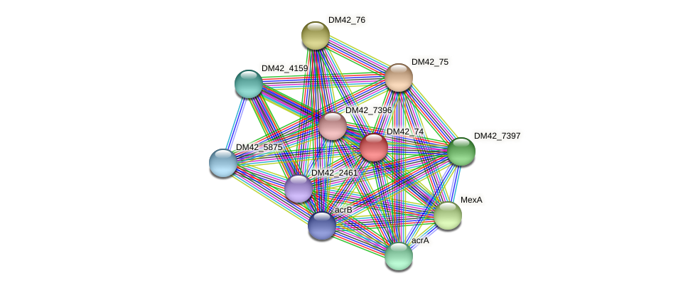 WL94_28915 protein (Burkholderia cepacia) - STRING interaction network