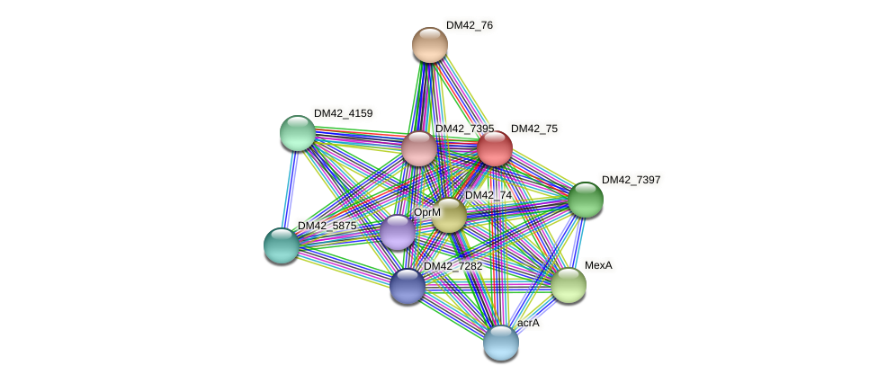 WL94_28910 protein (Burkholderia cepacia) - STRING interaction network