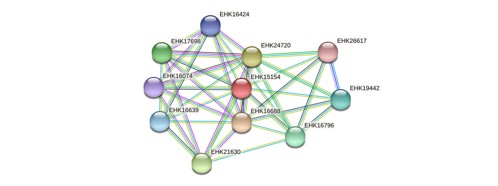 EHK15154 protein (Hypocrea virens) - STRING interaction network
