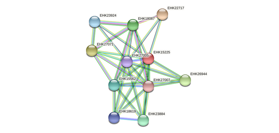 EHK15225 protein (Hypocrea virens) - STRING interaction network