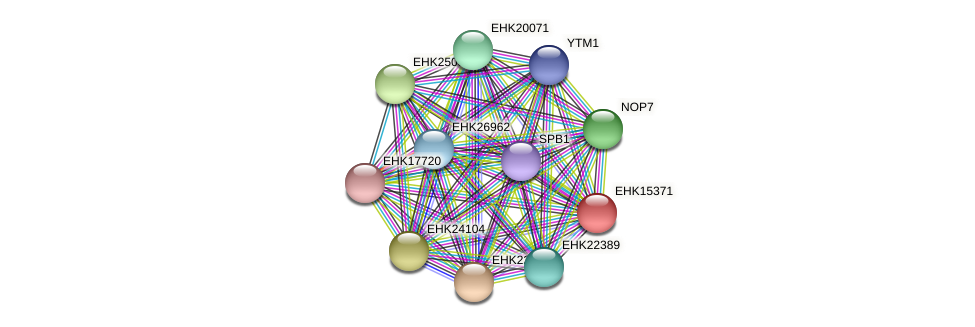 EHK15371 protein (Hypocrea virens) - STRING interaction network