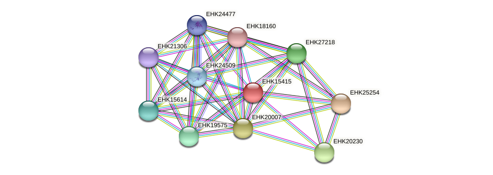 EHK15415 protein (Hypocrea virens) - STRING interaction network