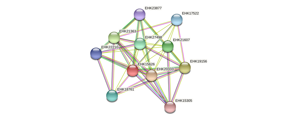 EHK15626 protein (Hypocrea virens) - STRING interaction network