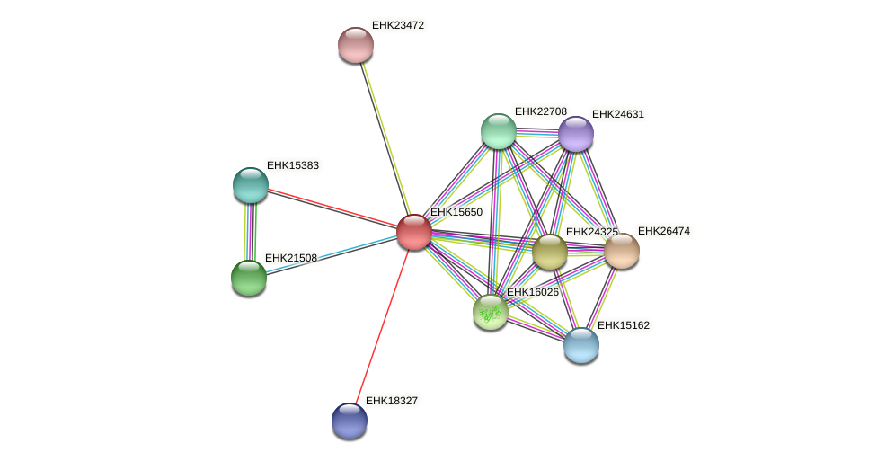 EHK15650 protein (Hypocrea virens) - STRING interaction network