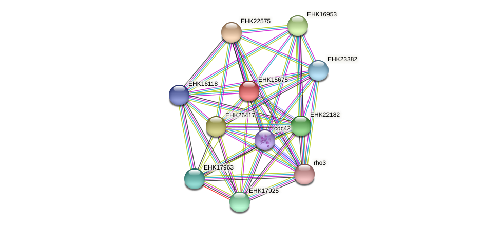 EHK15675 protein (Hypocrea virens) - STRING interaction network