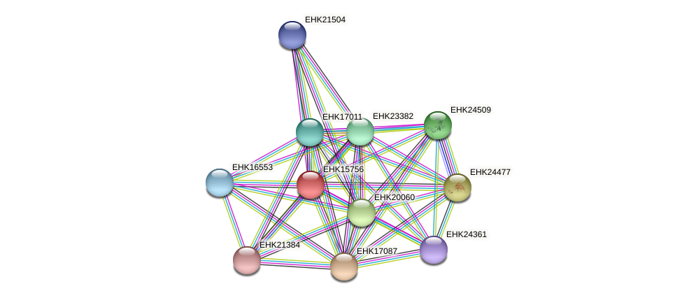 EHK15756 protein (Hypocrea virens) - STRING interaction network