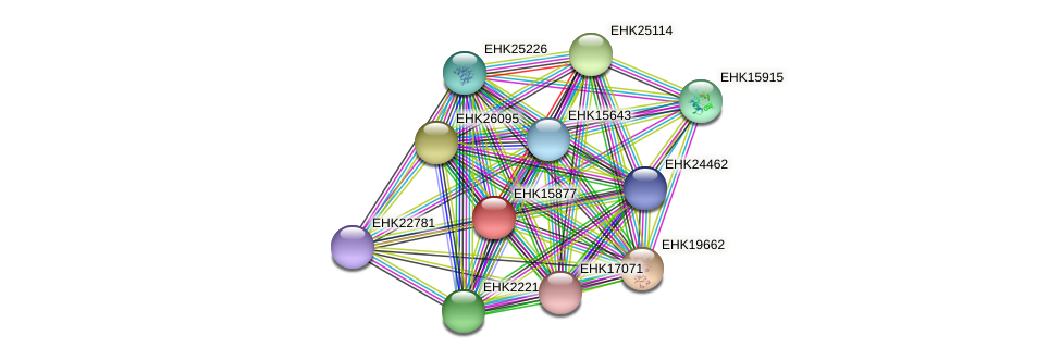 EHK15877 protein (Hypocrea virens) - STRING interaction network